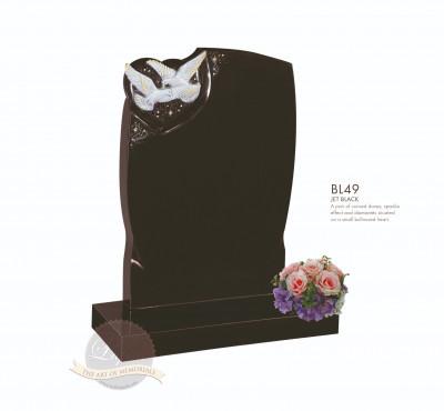 Bird Chapter-Two Dove Memorial
